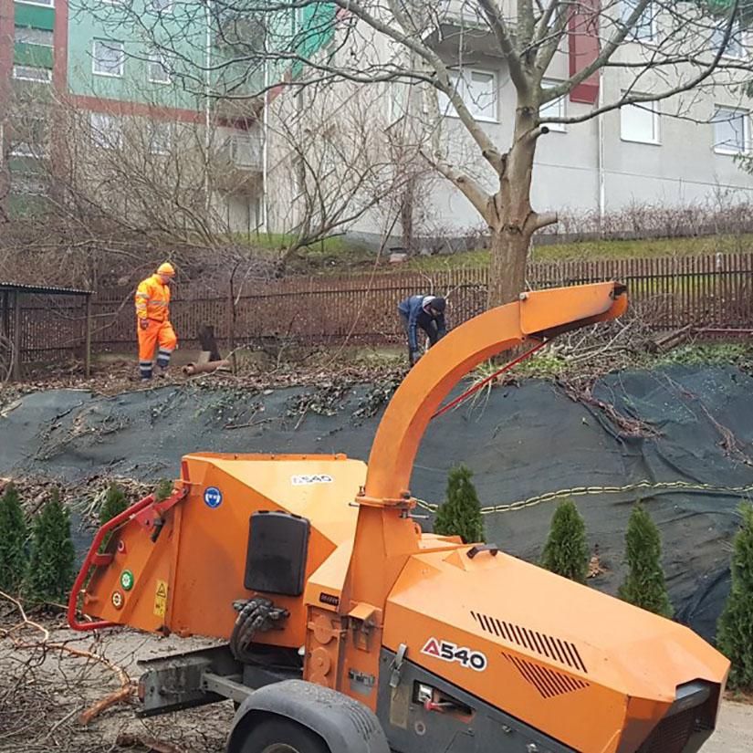 Wycinka drzew nieopodal budynku wielorodzinnego w Trójmieście